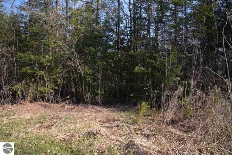 0 Birch Pointe Drive, Kewadin, MI 49648