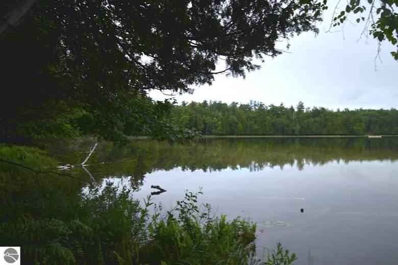 4882 Truax Lake Road, Williamsburg, MI 49690