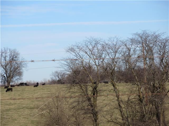 TBD S Cowger Road, Peculiar, MO 64078