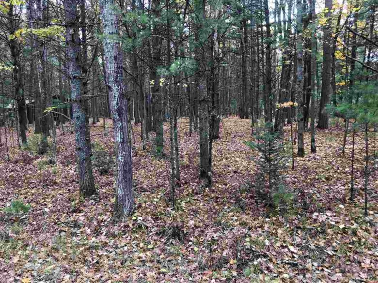 Lots 20-26 Reaves Forest, Roscommon, MI 48653