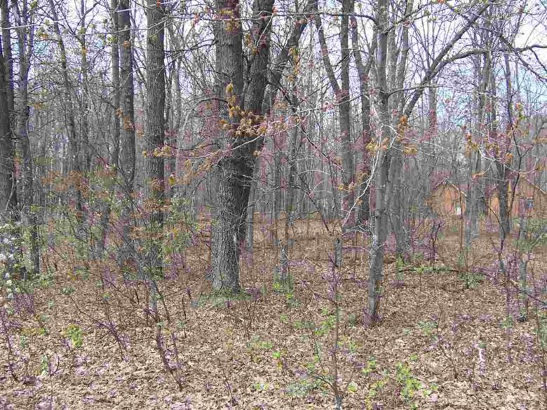 Lot 222-224 Agate, Roscommon, MI 48653