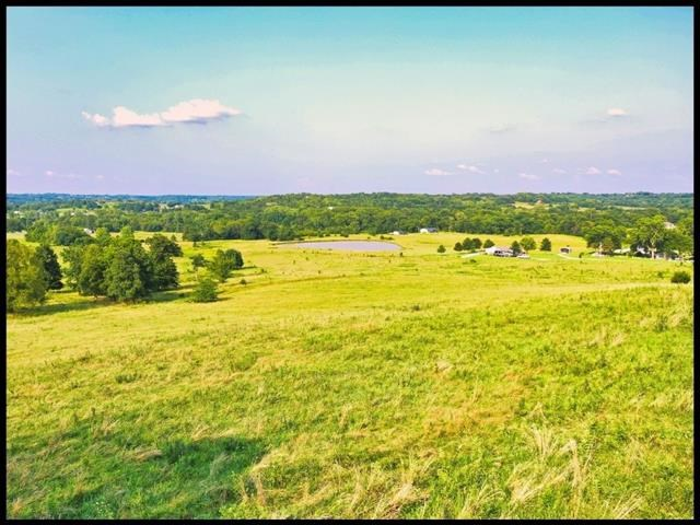 Lot 2 Bynum Spur Road, Lone Jack, MO 64070
