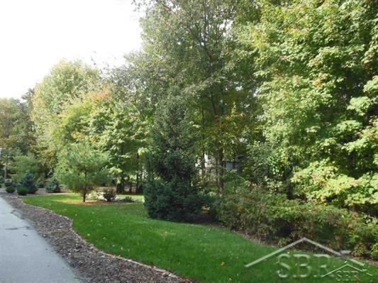 Lot 38 Northern Pintail, Hemlock, MI 48626