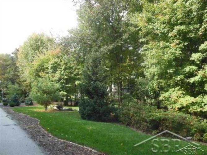 Lot 24 Northern Pintail, Hemlock, MI 48626