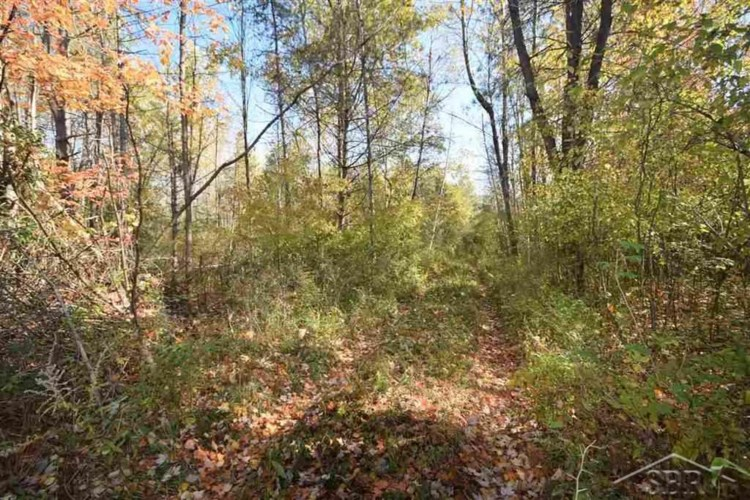 6810 Middle Rd, Hope, MI 48628