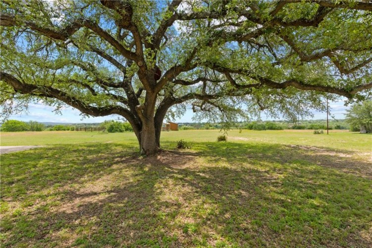 316 Paleface Point DR, Spicewood, TX 78669