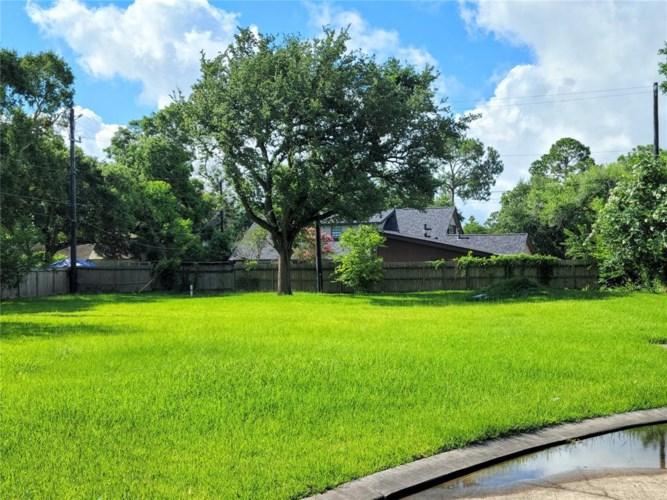 2510 Dauphin Court, Nassau Bay, TX 77058