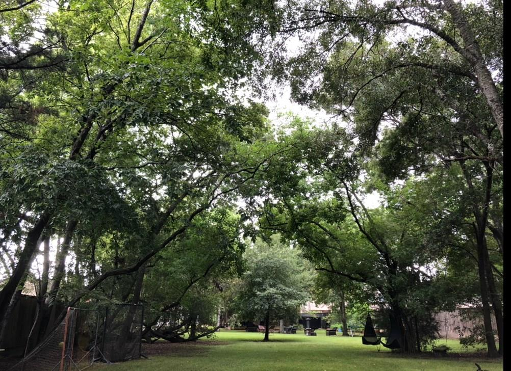700 Mulberry Lane, Bellaire, TX 77401