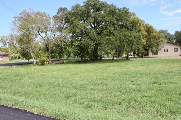 0 Yaupon Street, Oyster Creek, TX 77541