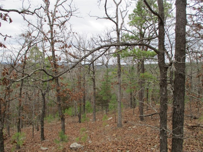 Rural Route Road, Wister, OK 74536