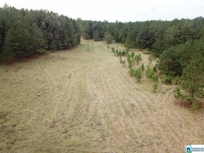 Wadley, Alabama CO RD 825, WADLEY, AL 36276