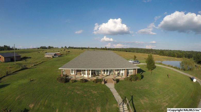 64 COUNTY ROAD 452, SECTION, AL 35771