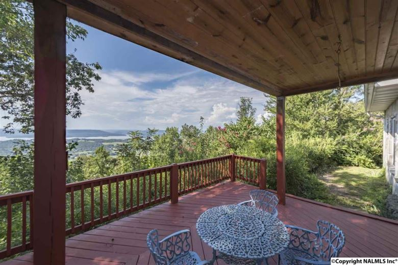 110 OVERLOOK DRIVE, SECTION, AL 35771