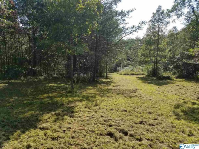 755 COUNTY ROAD 395, SECTION, AL 35771