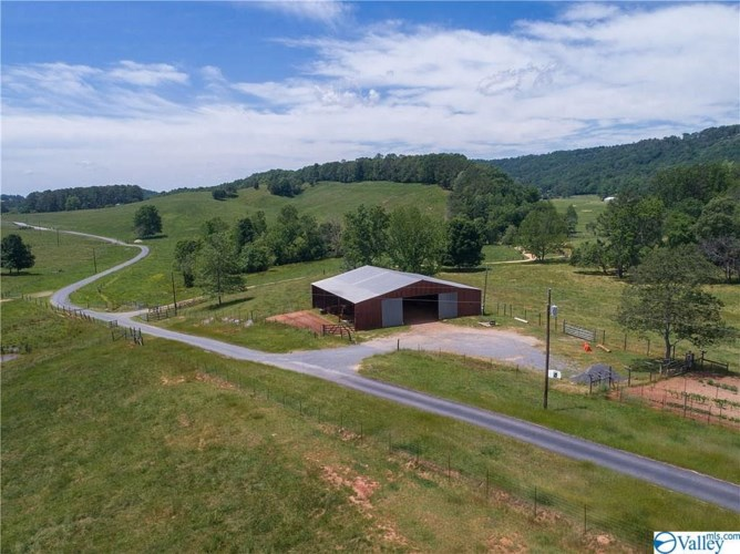 1210 COUNTY ROAD 870, COLLINSVILLE, AL 35961