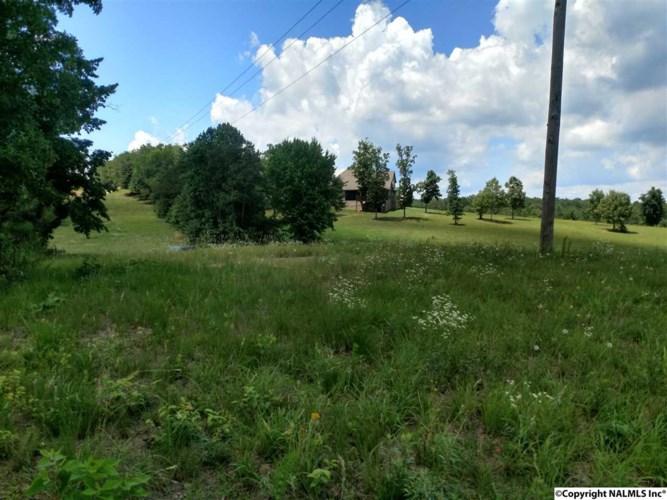 185 Legendary Drive  #LOT 19, Guntersville, AL 35976