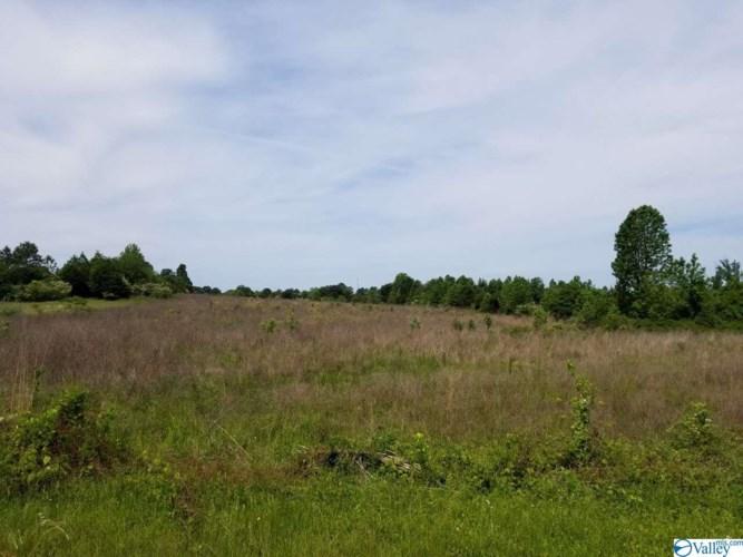 0 Old Railroad Bed Road, Harvest, AL 35749