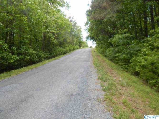County Road 641, Mentone, AL 35984