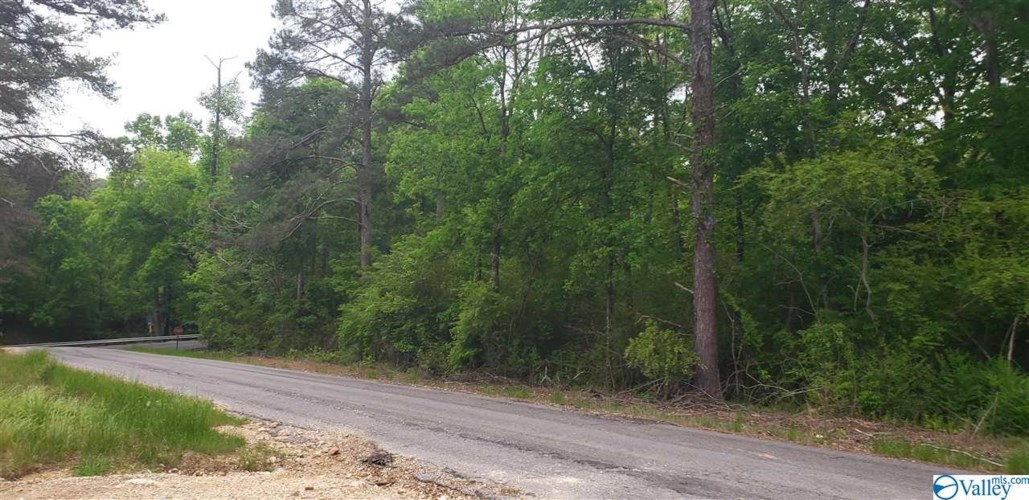 County Road 52, Section, AL 35771
