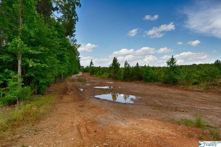 0 Mckee Road, Toney, AL 35773
