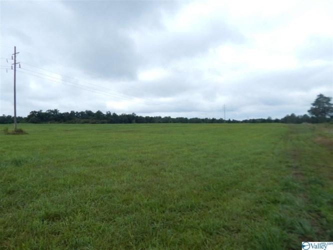 1944 County Road 411, Grove Oak, AL 35975