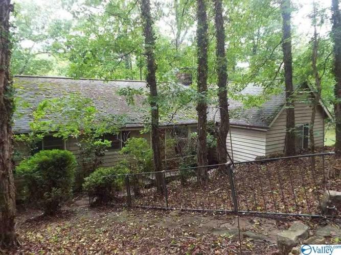 374 County Road 636, Mentone, AL 35984