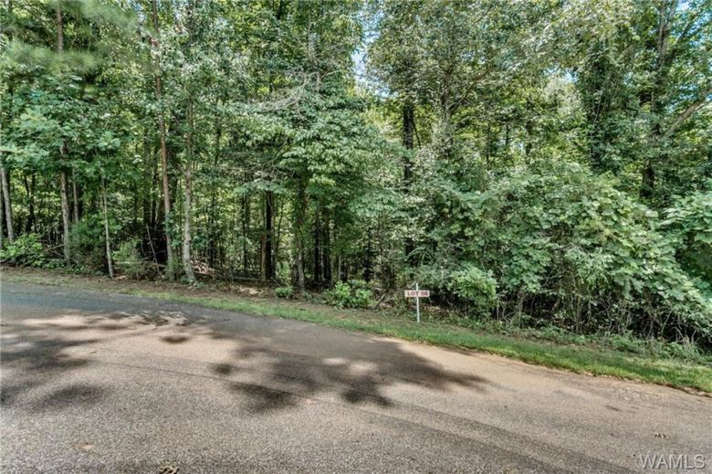 56 CARMEL BAY Drive  #56, Northport, AL 35475