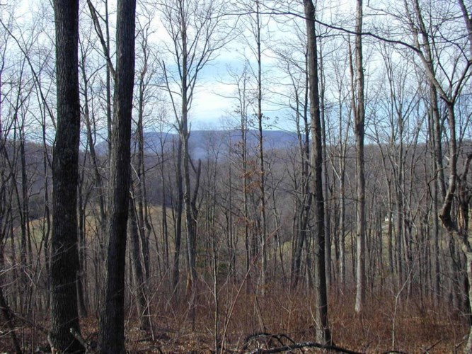 Lot 9  Deer DR, Lexington, VA 24450