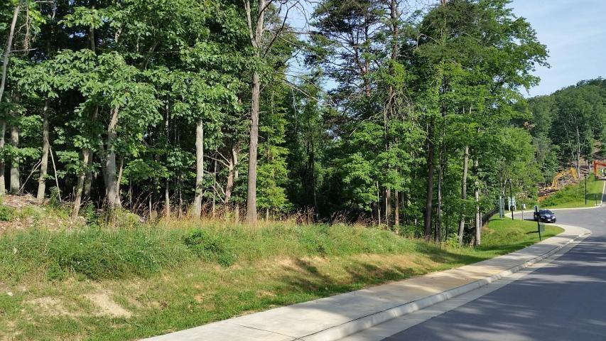 4865  South Peak Estates DR, Roanoke, VA 24018