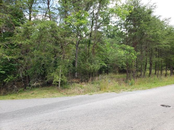 Lot 64  Meadow Point DR, Moneta, VA 24121