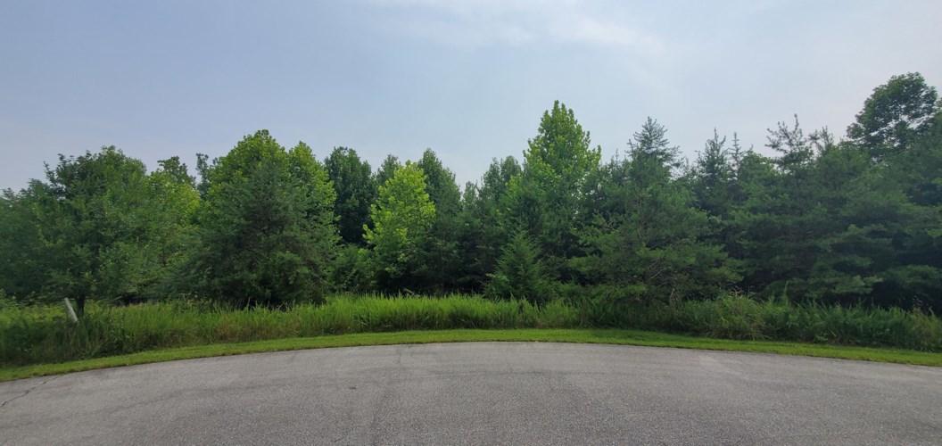Lot 11  Golf View CT, Huddleston, VA 24104