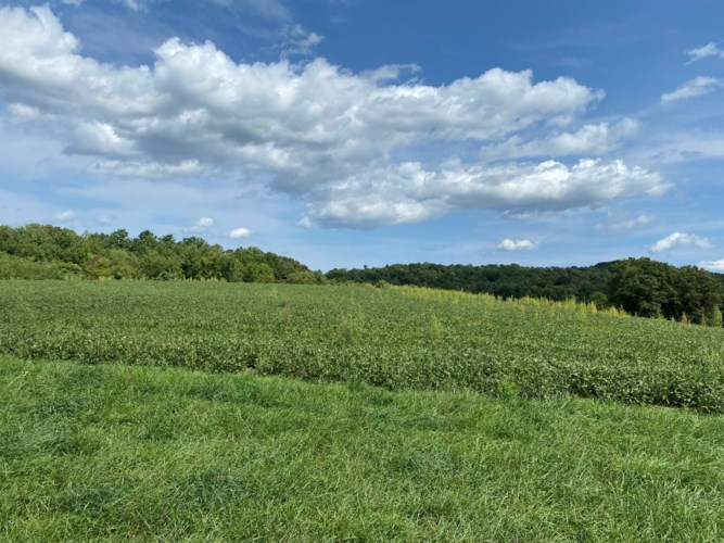 0  Grassy Hill RD, Boones Mill, VA 24065