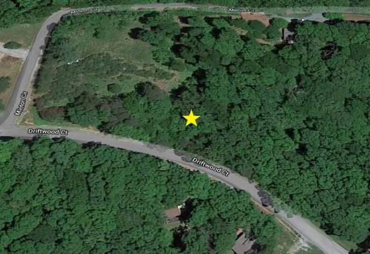 Lot 99  Driftwood CT, Moneta, VA 24121