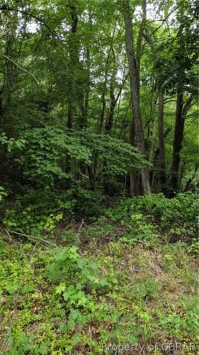 Route 633 Old Ferry Road, Grimstead, VA 23064