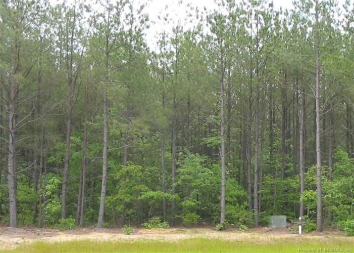 Lot 49 Plantation Place, Little Plymouth, VA 23091