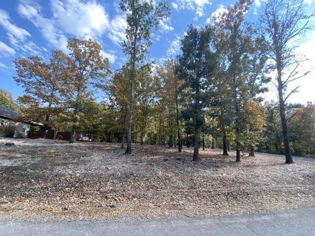 Ness Lane, Bella Vista, AR 72715