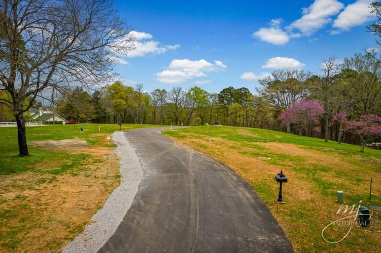 2 Pine Crest Lane, Eureka Springs, AR 72632