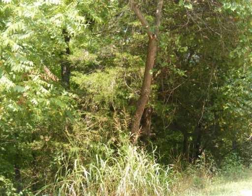 97 Beaver Drive, Holiday Island, AR 72631
