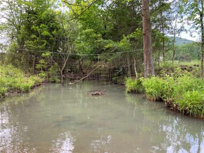 5066 County Road 906, Green Forest, AR 72638