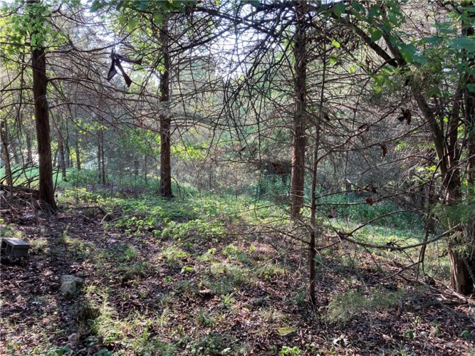 LOT #6 White River, Holiday Island, AR 72631