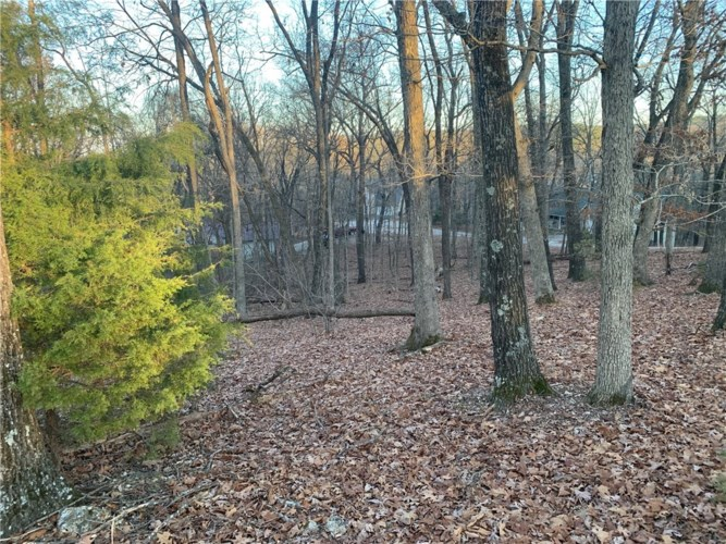 Lot 6, Block 4 Country Club Drive, Holiday Island, AR 72631