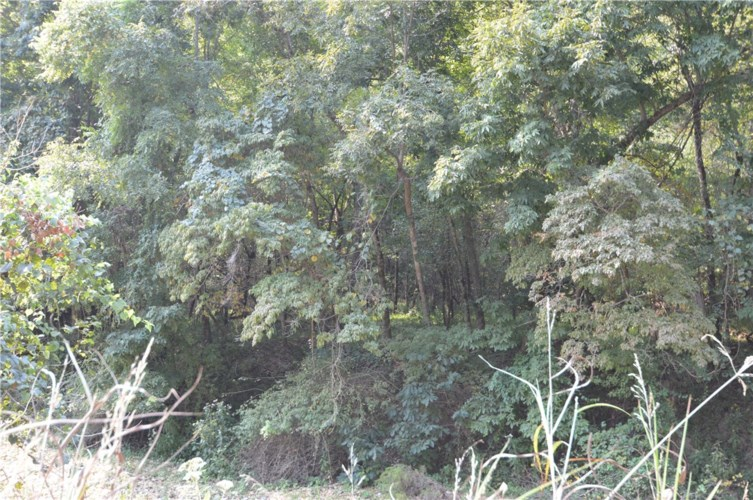 Esculapia Hollow Road, Rogers, AR 72758