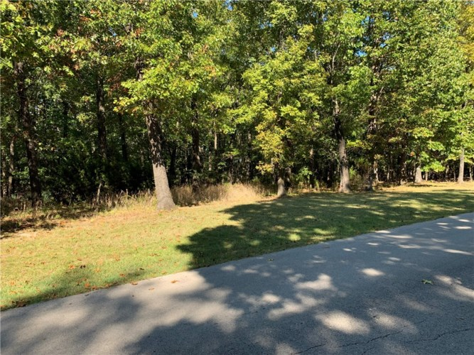 Lot 1 Ferncliff Point Subdivision, Bull Shoals, AR 72619