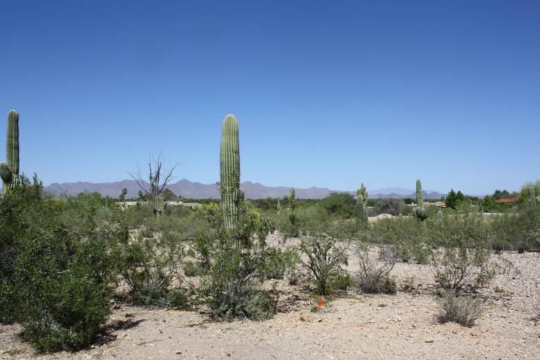 7643 N IRONWOOD Drive, Paradise Valley, AZ 85253