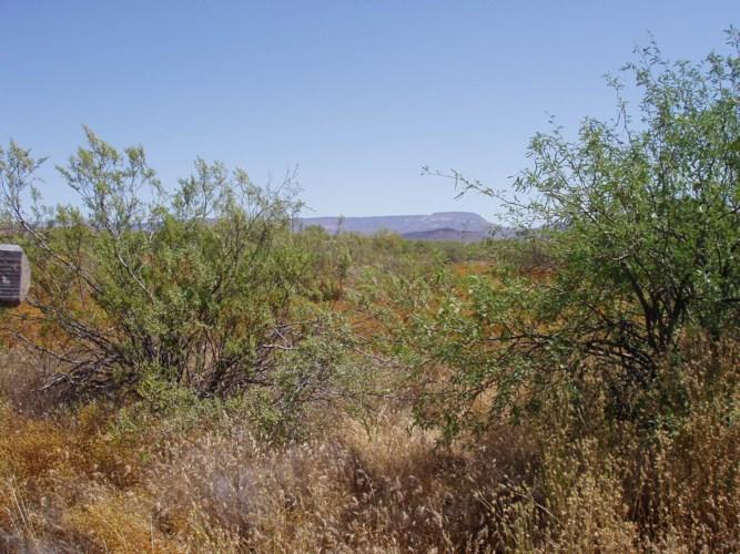 0 W Joy Ranch Road, Desert Hills, AZ 85086