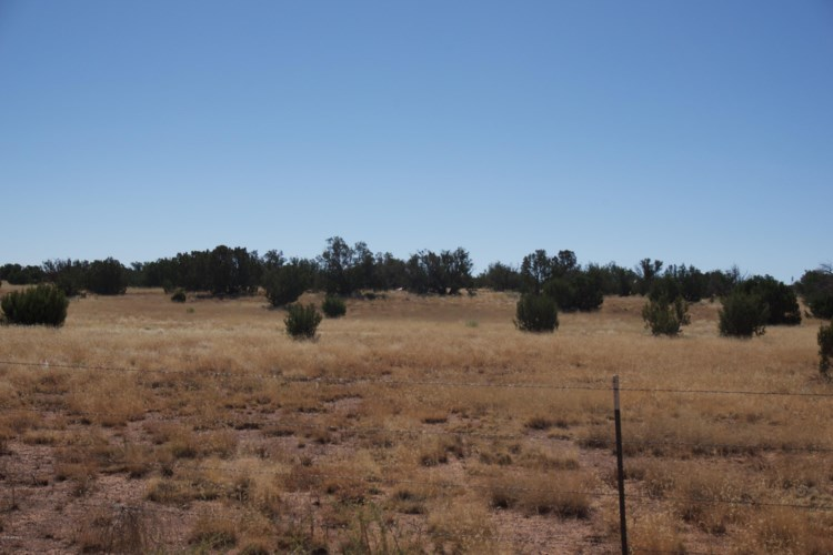 5184  COYOTE Trail, Heber, AZ 85928
