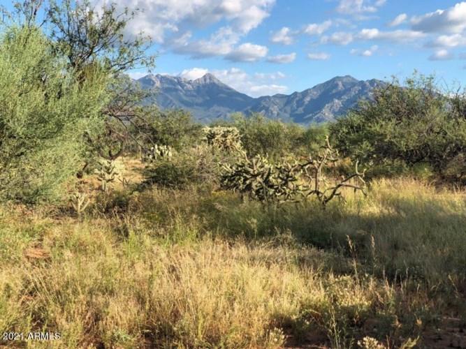 3311 S Camino De La Canoa --, Green Valley, AZ 85614