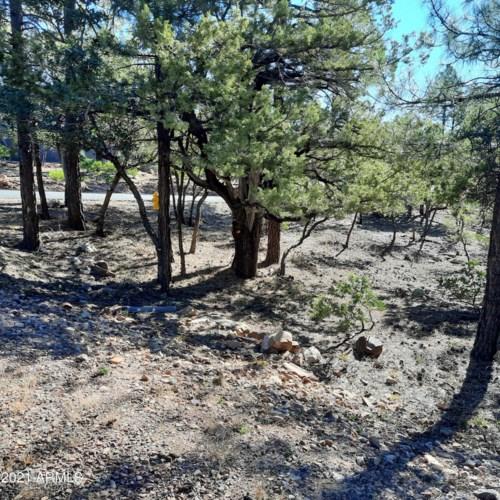 90 Mystical Circle, Pine, AZ 85544