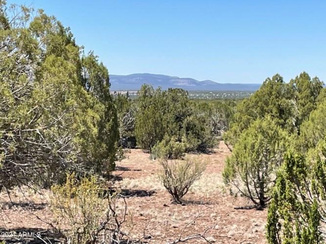 73 Acres Antelope Trail --, Seligman, AZ 86337