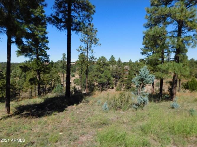 2294 CONSTELLATION Circle, Overgaard, AZ 85933